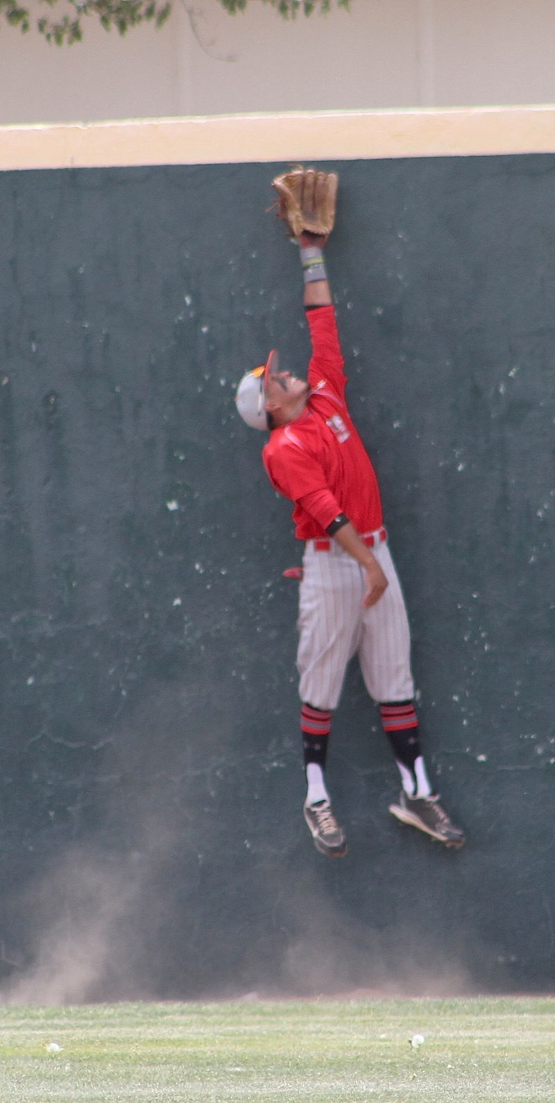 Lobos pic22-my best pic-Ozzie leaps but its a home run