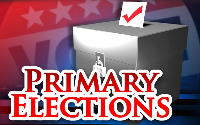 Primary Elections graphic