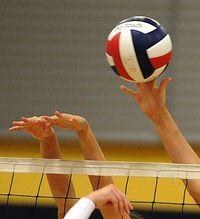 Volleyball logo2