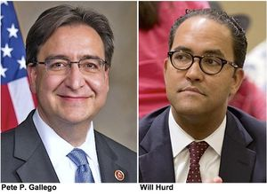 Pete Gallego and Will Hurd mugs