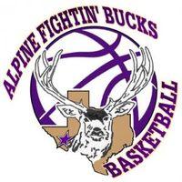 AHS boys basketball logo