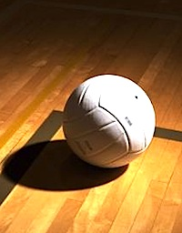 Volleyball logo1