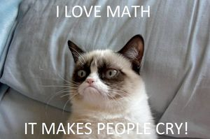 Math make people cry
